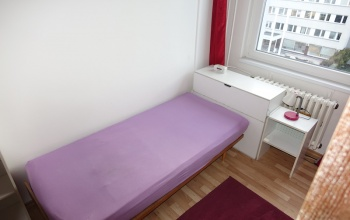PRAHA 4 - CHODOV, 1 Pokojů pokoje,1 KoupelnaBathrooms,Byty,Pronájem,HRÁSKÉHO,5,1040